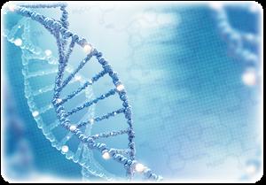 全染色体全領域部分欠失疾患の検査