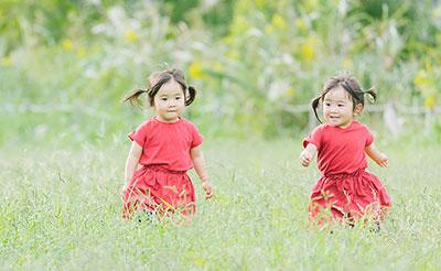双子の場合でも検査可能